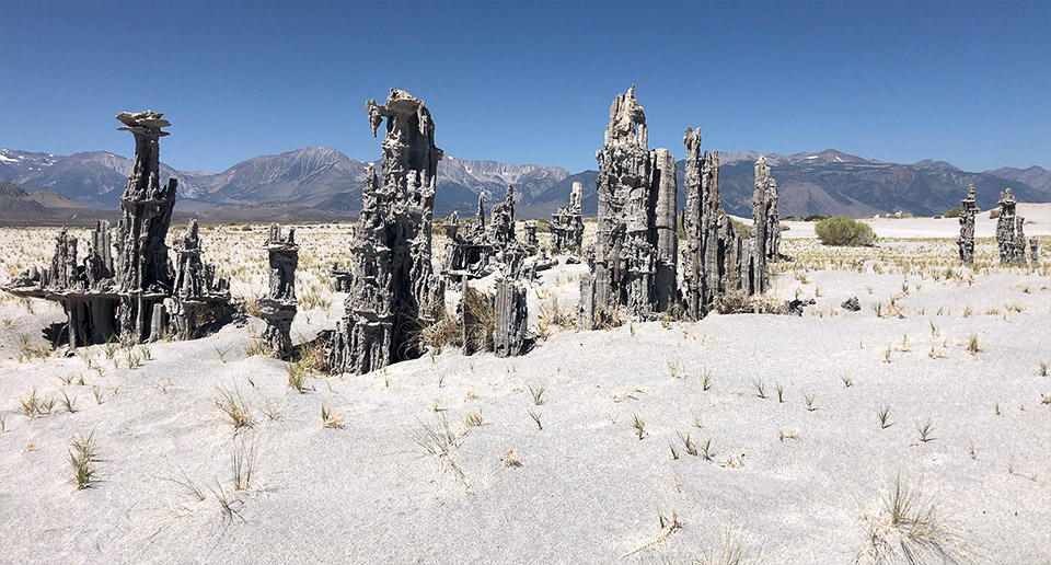 Many of the east side, Mono Lake sand tufas look like the remnants of ancient, alien civilizations.